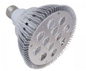 LED PAR Light LH-PAR38-12W01